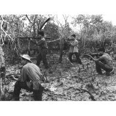 汝の敵ベトコンを知れ ベトナム戦争資料映像